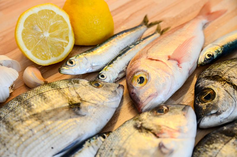 Fresh fish with lemon ready for cooking. Preparing delicious and tasty seafood meal. Uncooked Gilt-head sea bream, Sardines, Commo royalty free stock images