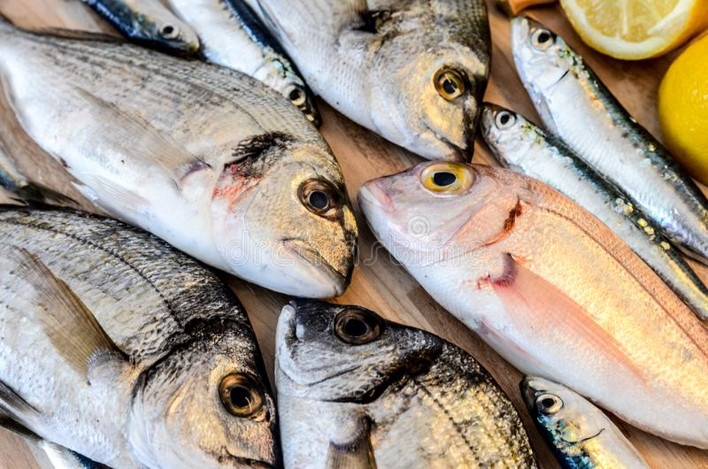 Fresh fish with lemon ready for cooking. Preparing delicious and tasty seafood meal. Uncooked Gilt-head sea bream, Sardines, Commo royalty free stock photos