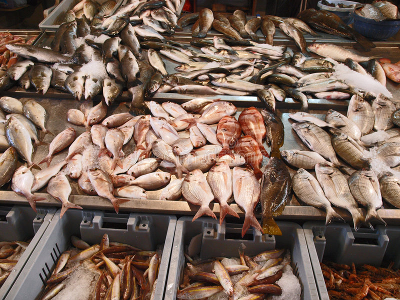 Fresh fish in the market. Display of fresh fish in the market stand royalty free stock photos