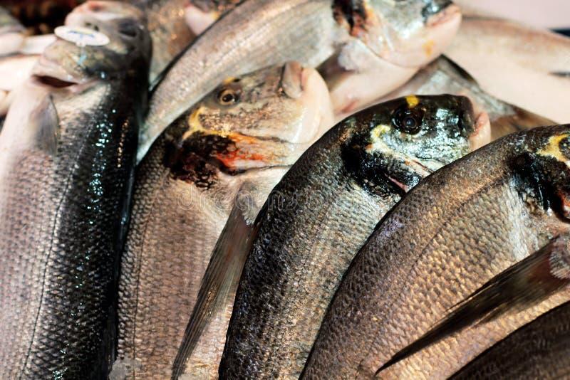 Fresh fish on market display stock photography