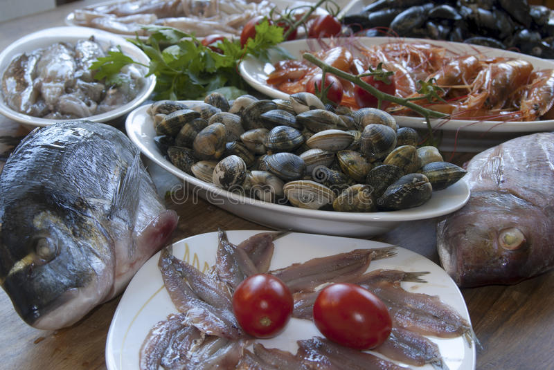 Fresh fish. Raw and mediterranean bluefish: dentex,crustacea, clams and other royalty free stock photo