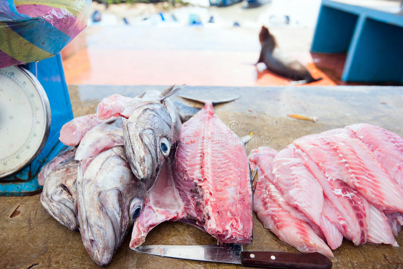 Fresh Fish At Seafood Market Royalty Free Stock Photography