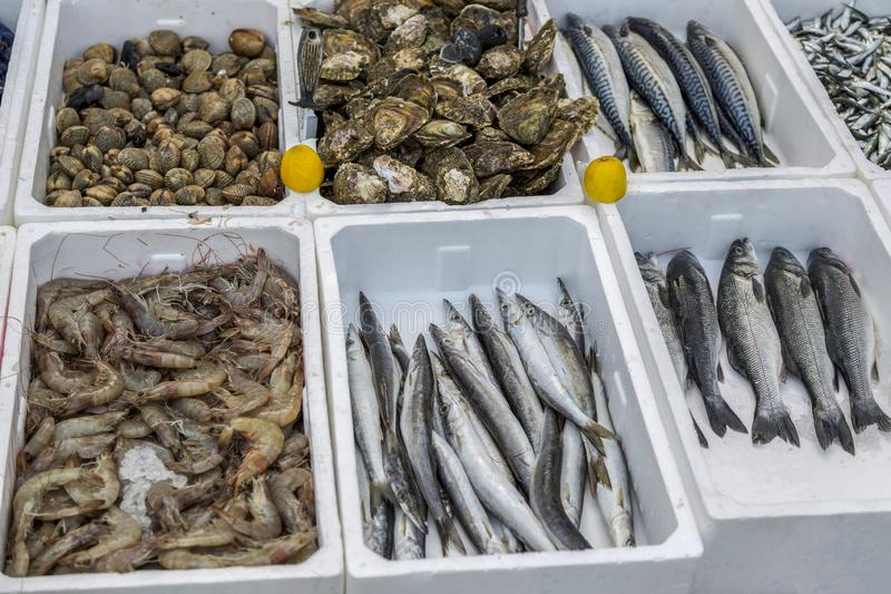 Fresh fish and seafood at the market of Budva in Montenegro.  royalty free stock photos