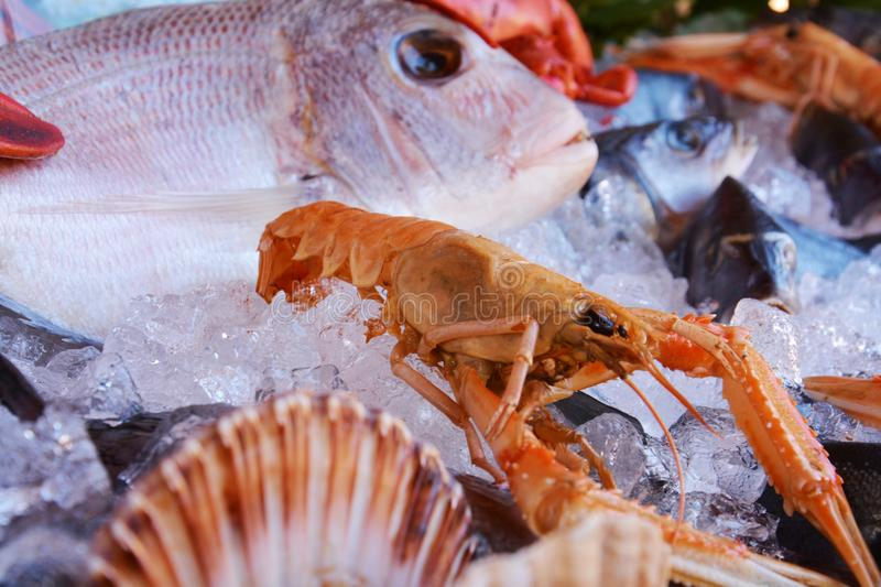Fresh fish of various species and colors stock photo