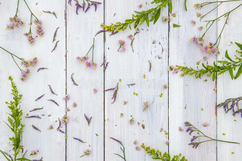 Fresh flowers on white wooden background royalty free stock photos