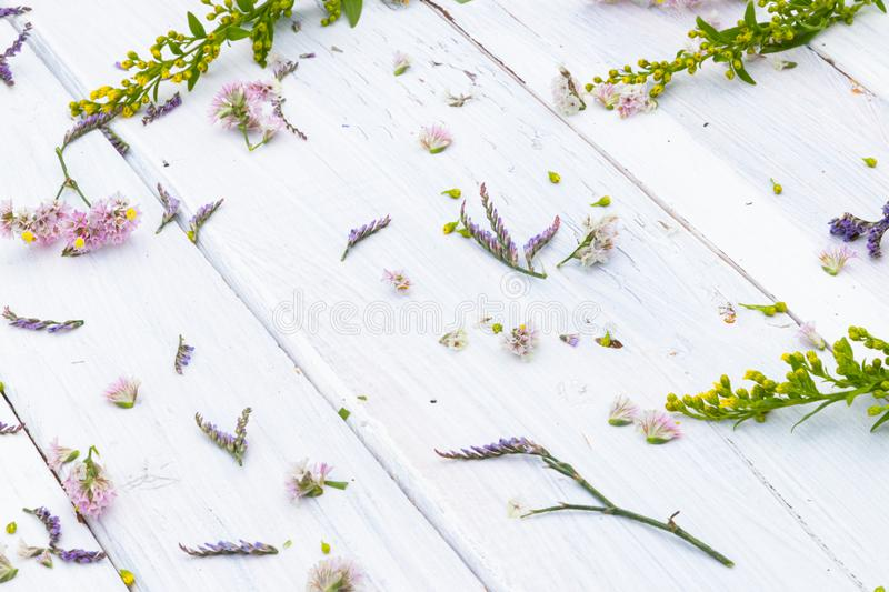 Fresh flowers on white wooden background royalty free stock photography