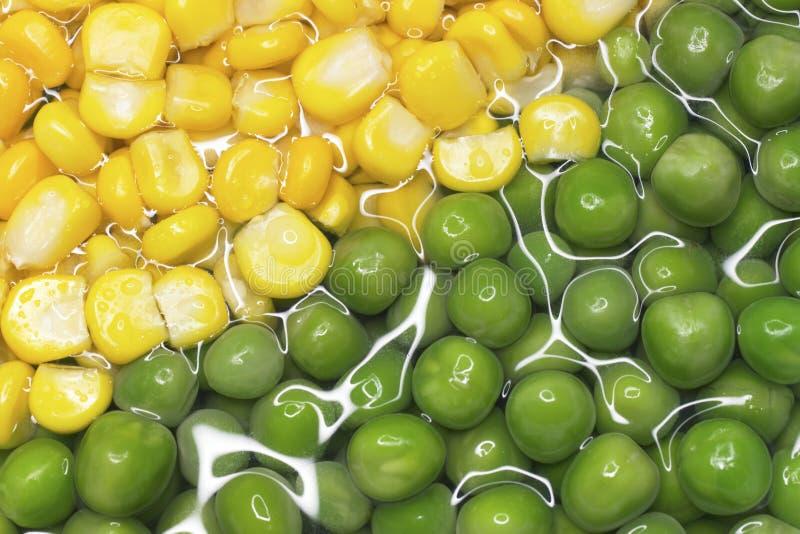 Fresh Food royalty free stock photos