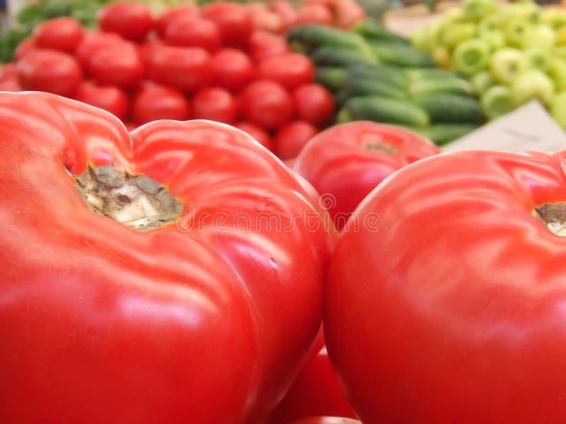 Fresh food on market. Daily fresh food on market stock photography