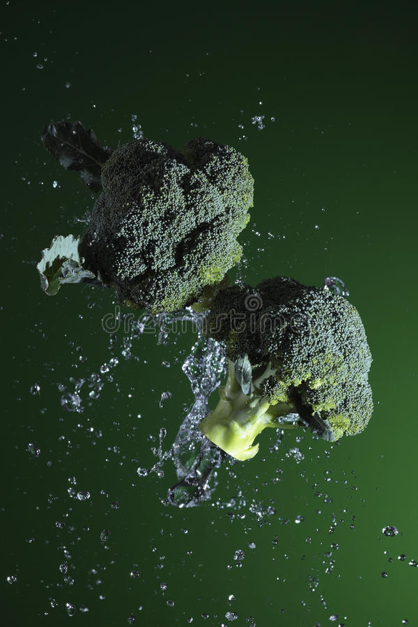 Fresh Food. Two cauliflower with black background royalty free stock photos