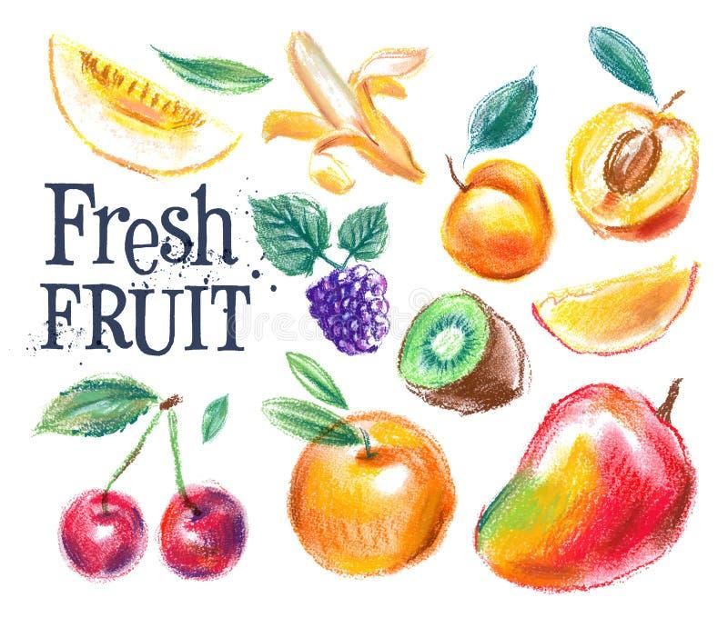 Fresh food vector logo design template. ripe fruit. Fresh fruit on a white background. vector illustration royalty free illustration