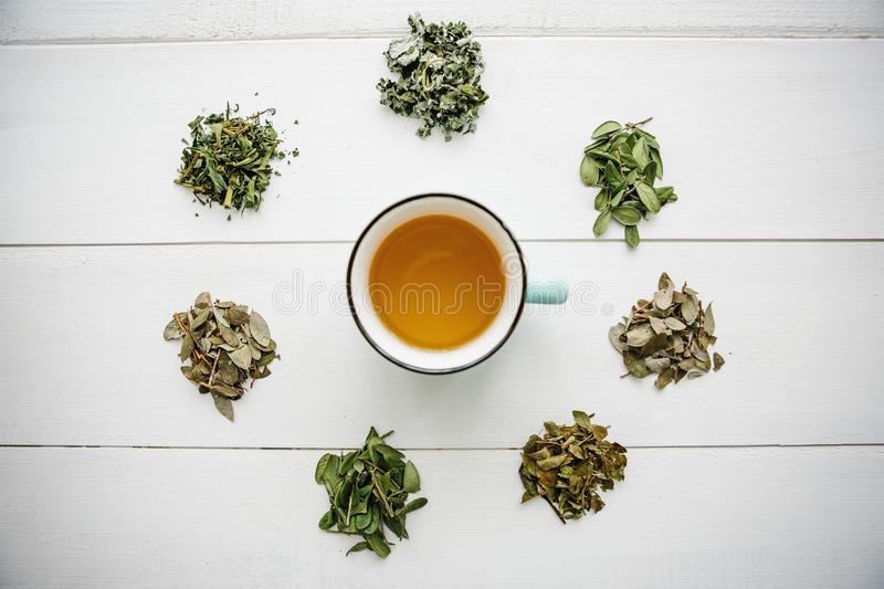 Fresh fragrant and healthy herbal tea in a glass or mug on a white wooden surface. Next to it lie various dried herbs royalty free stock images