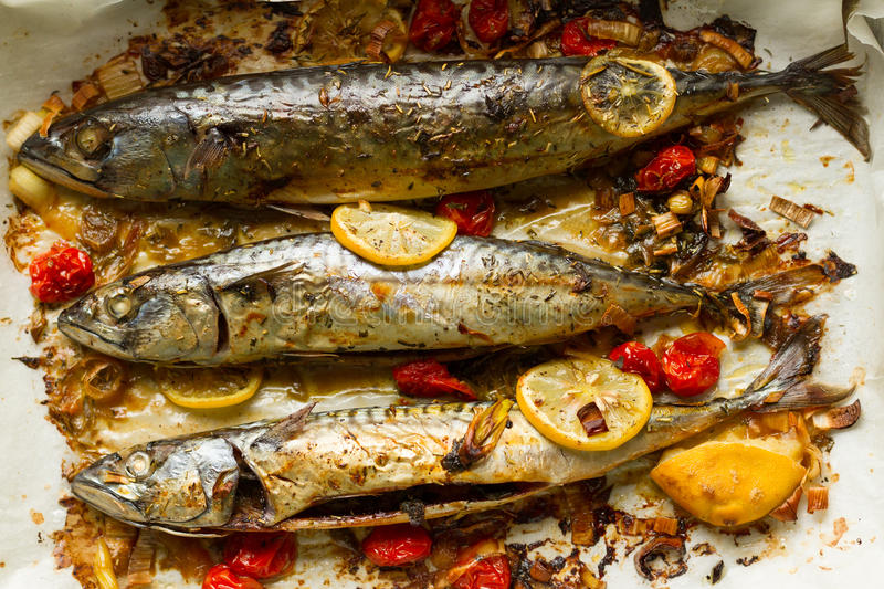 Fresh, fragrant from the oven pulled mackerels with lemons, tomatoes and herbs. Homemade fish food for lunch royalty free stock images