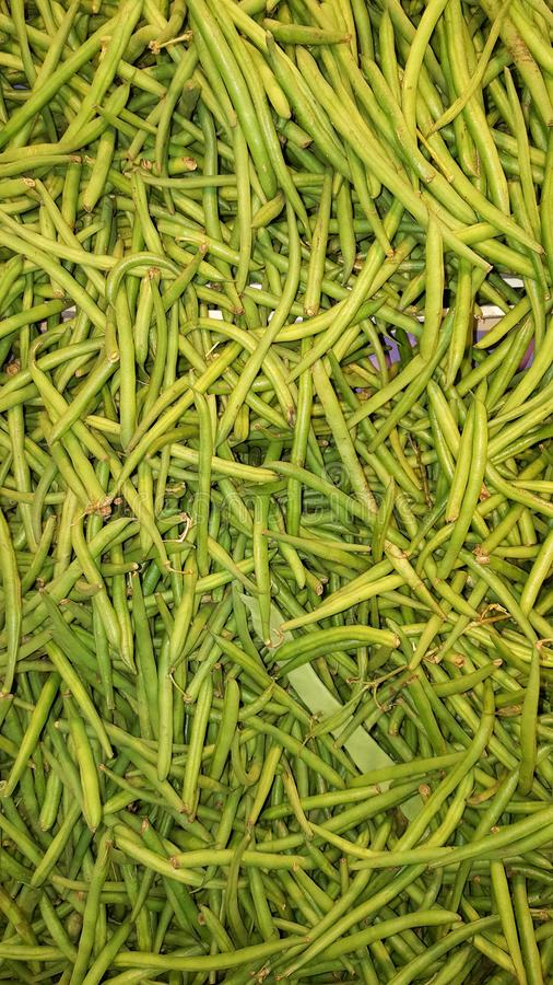 French string green bean background. Fresh french string green bean background royalty free stock photos