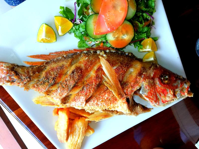 Fresh fried red snapper. Seafood.Fresh fried red snapper. Entire fresh fish fried and served with yuca and salad. Costa Rica food. Coast zone tourism. Tipicall stock photos