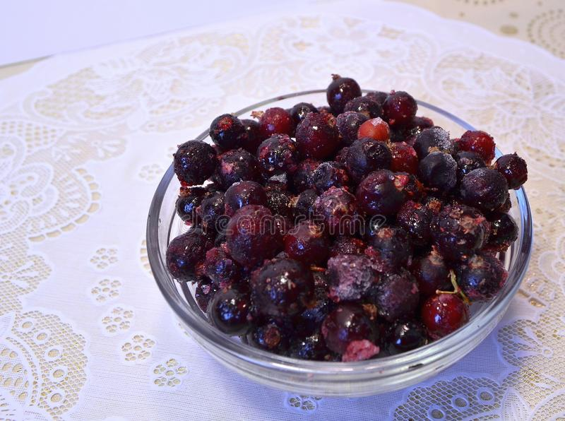 Fresh frozen berry - black currant in a cup. Fresh-frozen berry - black currant in a cup, which recently got out of the freezer, with a touch of frost royalty free stock photography