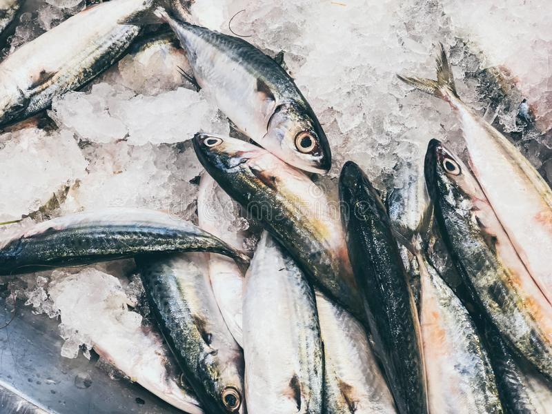 Fresh frozen fish was sold in supermarkets stock photos