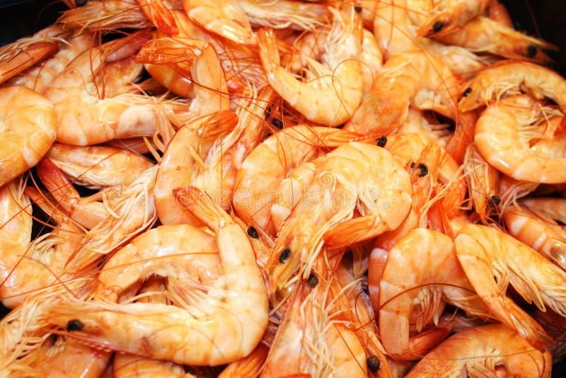 Fresh frozen shrimp stock images