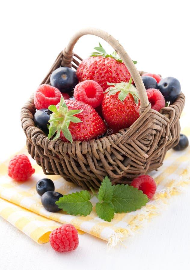 Free Fresh Fruit Basket Stock Photography - 19554682