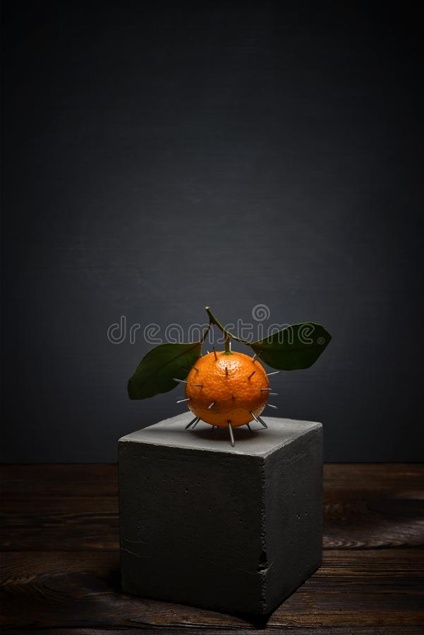 Fresh fruit on dark background on concrete stand. Bright orange tangerine with leaves with sharp thorns stock image