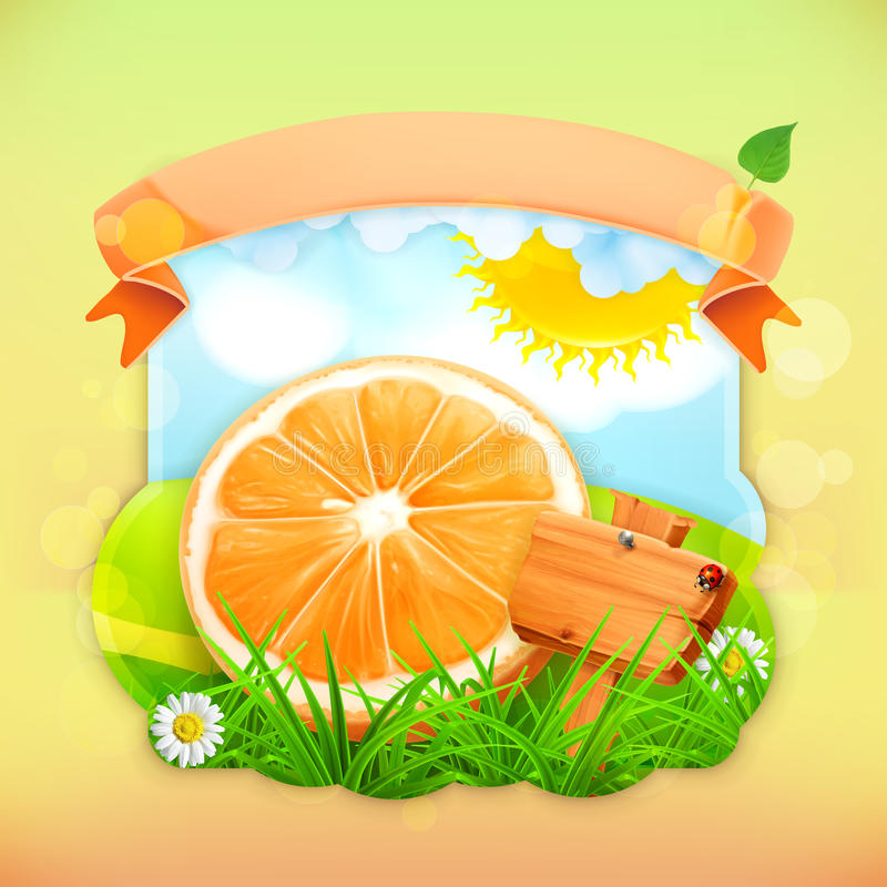 Fresh fruit label orange. Vector illustration background for making design of a juice pack, jam jar etc vector illustration