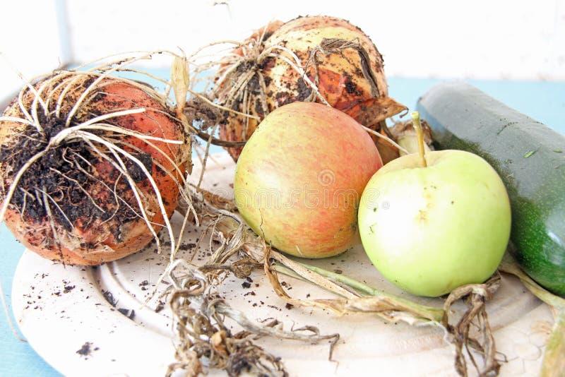 Fresh Fruit and Veg royalty free stock photography