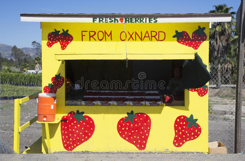 Fresh fruit yellow roadside stand, Route 126, Santa Paula, California, USA royalty free stock images
