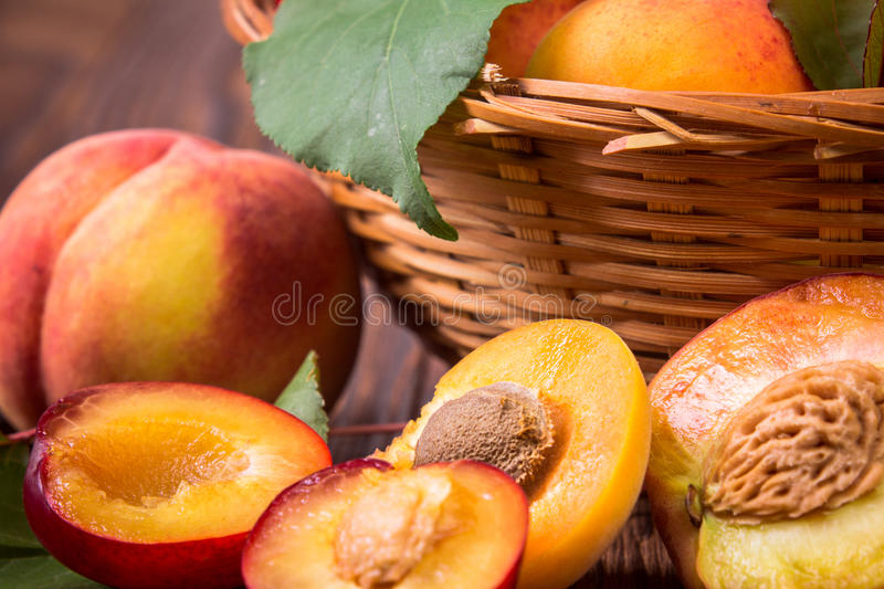 Fresh fruits in a basket. Whole and half peaches, plums and apricots in a basket stock photography
