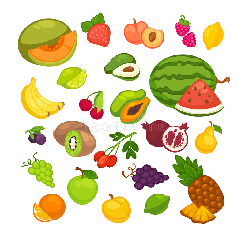 Fresh fruits icons set. Collection of vector sweet vegetarian food illustration vector illustration