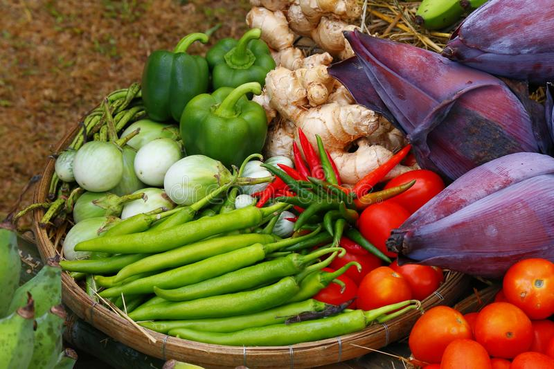 Fresh fruits and vegetables. stock photography