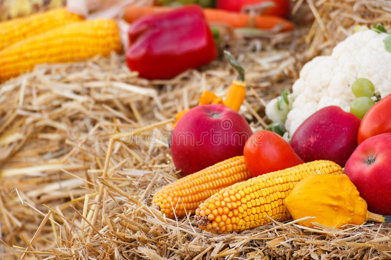 Fresh fruit and vegetables on straw, agriculture on summer or autumn. Fresh fruits and vegetables lying on straw, concept of agriculture on summer or autumn stock image