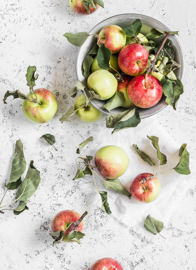 Free Fresh Garden Apples On A Light Background. Rustic Style. Stock Images - 75610004