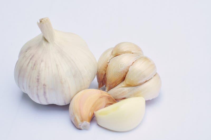 Download Fresh garlic stock image. Image of medicine, nobody, bulb - 24410925
