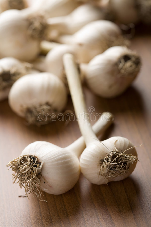 Download Fresh garlic background stock image. Image of piquant - 6830469