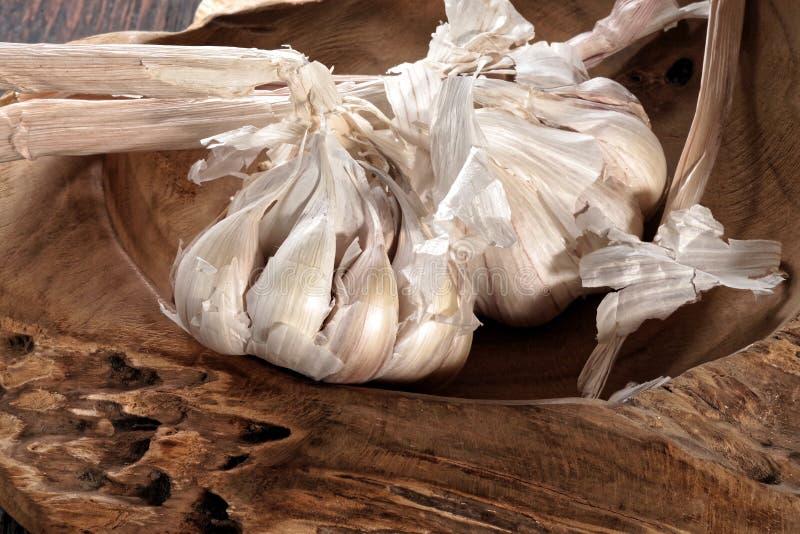 Fresh garlic bulb and garlic cloves royalty free stock photography