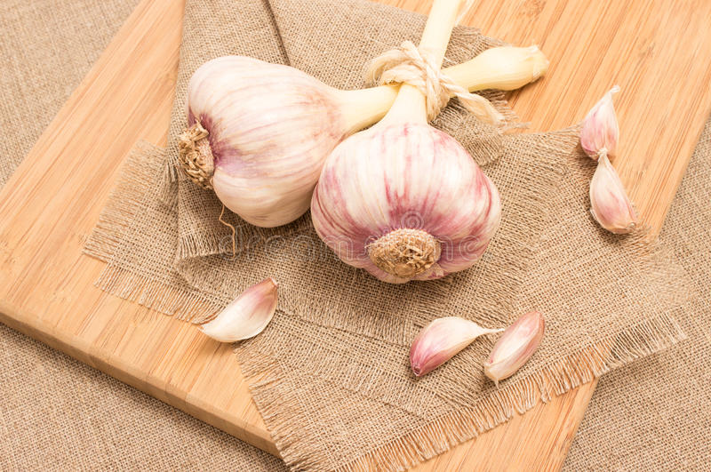 Fresh garlic on canvas close up. Diet supplements fresh garlic on canvas stock images