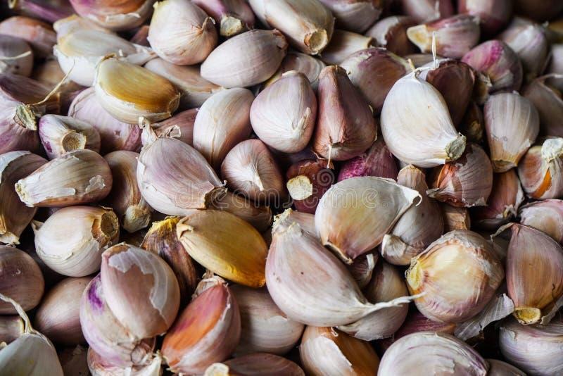Fresh garlic cloves in the market. White garlic pile texture royalty free stock photos