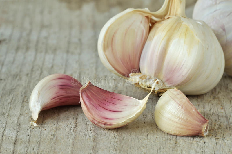 Fresh garlic head and cloves stock images