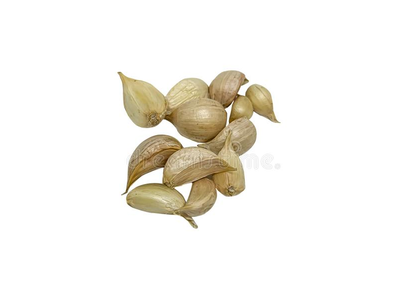 Fresh garlic is ready to be used for cooking. on the White Background. Top view royalty free stock image