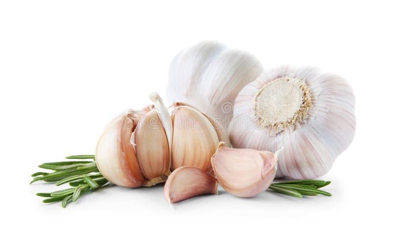 Fresh garlic on white background. Organic product stock image