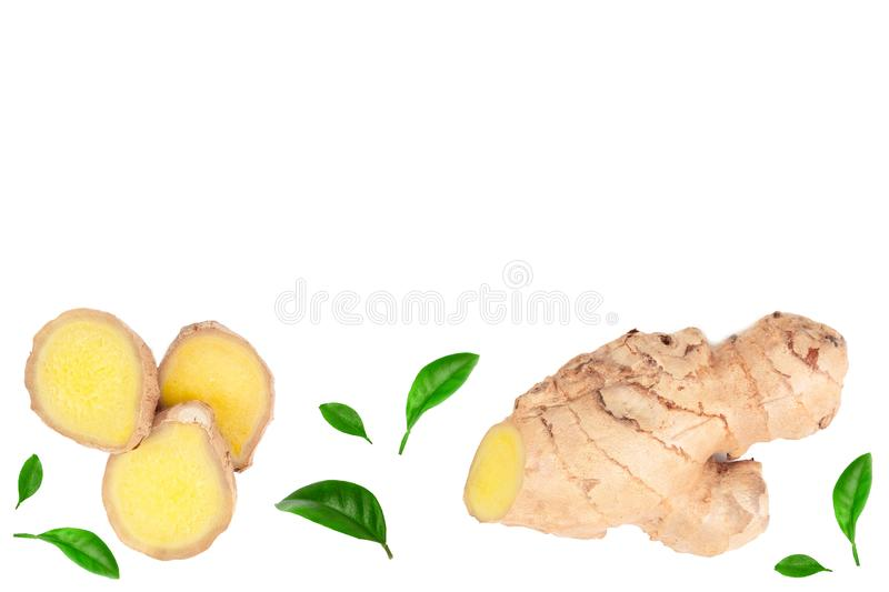 Fresh Ginger root and slice isolated on white background with copy space for your text. Top view. Flat lay.  vector illustration