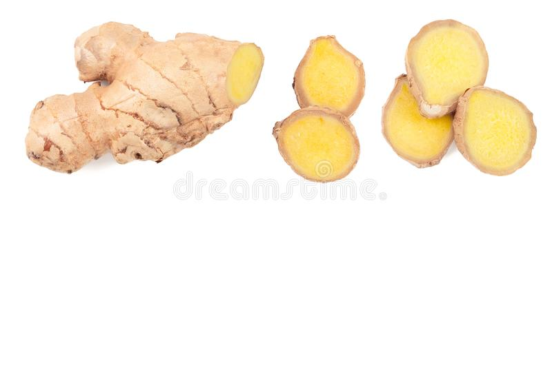 Fresh Ginger root and slice isolated on white background with copy space for your text. Top view. Flat lay.  royalty free illustration