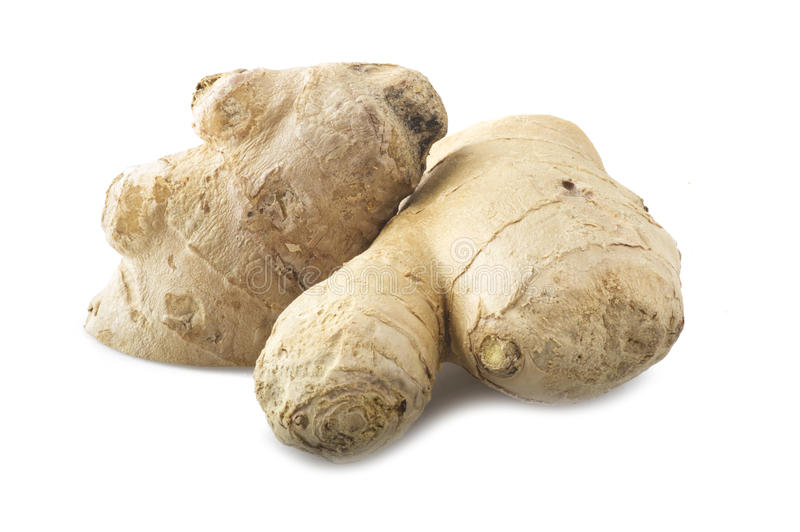 Fresh ginger. Root on the white background royalty free stock images