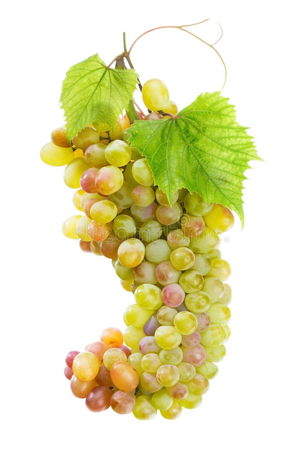 Fresh grape with leaves stock images