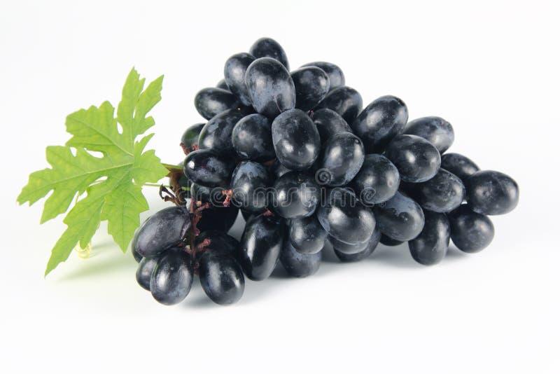 Fresh Grape on white stock image