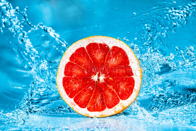 Download Fresh grapefruit stock photo. Image of drop, fresh, fruit - 24119052