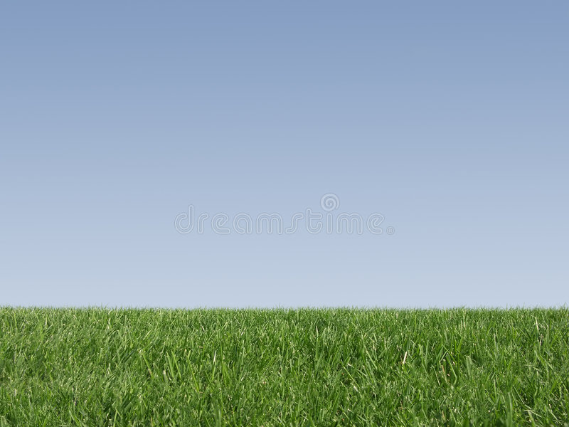 Download Fresh grass stock image. Image of grow, background, garden - 1667871