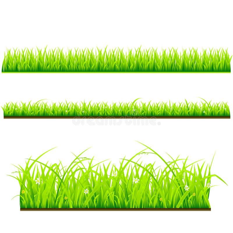 Fresh grass vector template vector illustration