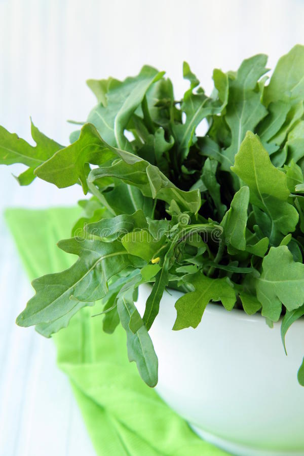 Download Fresh green Arugula salad stock photo. Image of salad - 17664996