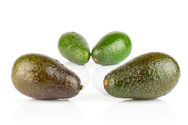 Fresh green avocado isolated on white royalty free stock image