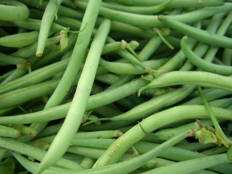 Fresh Green Beans royalty free stock photo